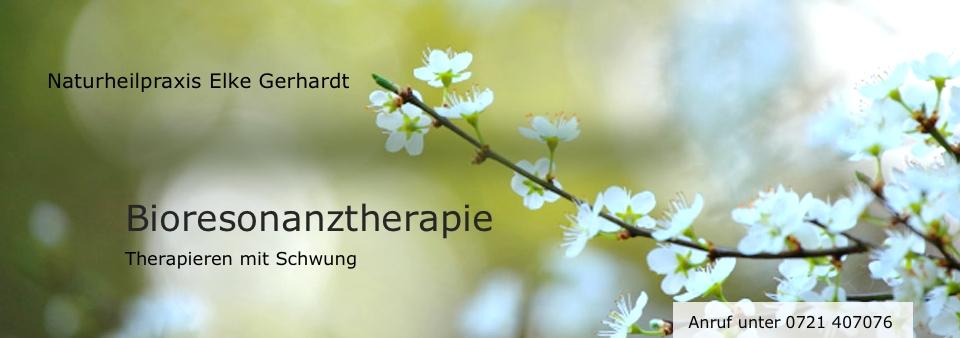 Logo Bioresonanztherapie in Karlsruhe